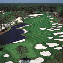 retire in South Carolina, play golf